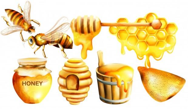 Penyakit pada lebah